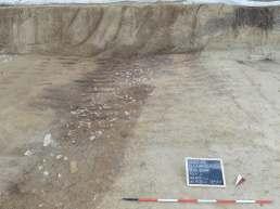 Fig. 2 - Secondo evento erosivo con materiali riferibili all'Eneolitico accumulatisi sul livello basale del riempimento. Sono visibili sulla sezione esposta le strutture in negativo ancora da indagare.